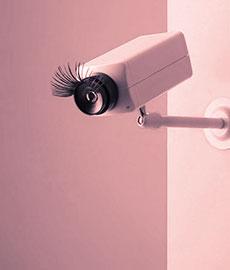 ¿Te pasas de stalker?